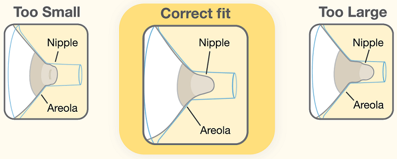 Medela's Guide to Finding The Correct Breastshield Size