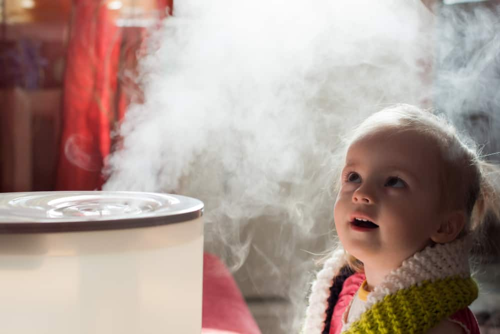 10 Best Humidifiers for Babies on the Market (2019 Reviews)