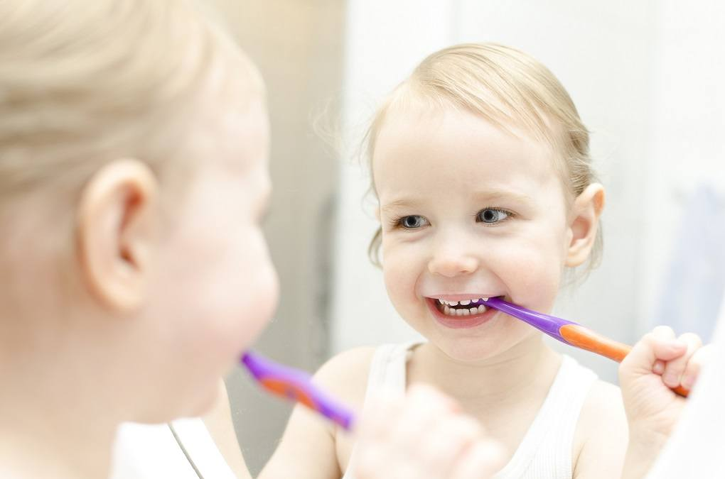 Best All Natural Toothpaste For Toddlers