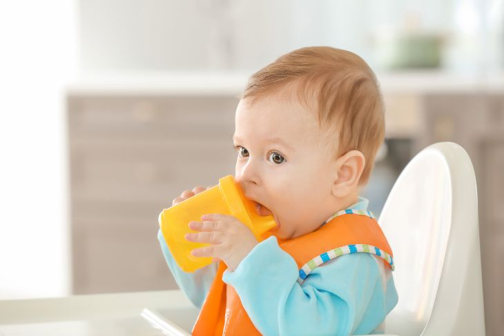 A Comprehensive Sippy Cup Safety Guide (Sip With No Fears)