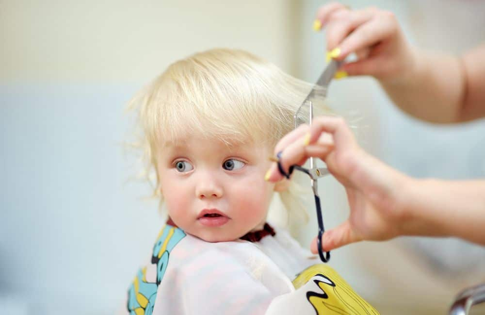 Toddler getting a haircut