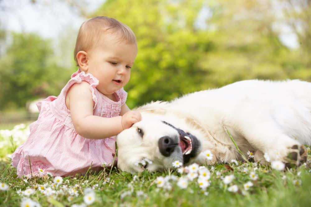 Baby girl playing with a dog outside