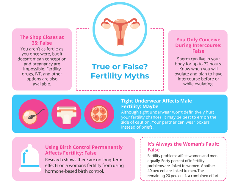 Fertility Myths Infographic