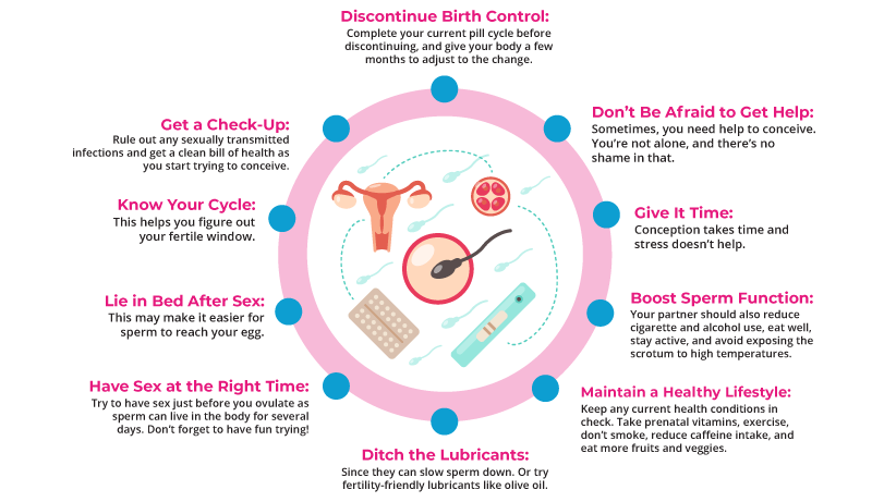 How To Get Pregnant Fast Infographic