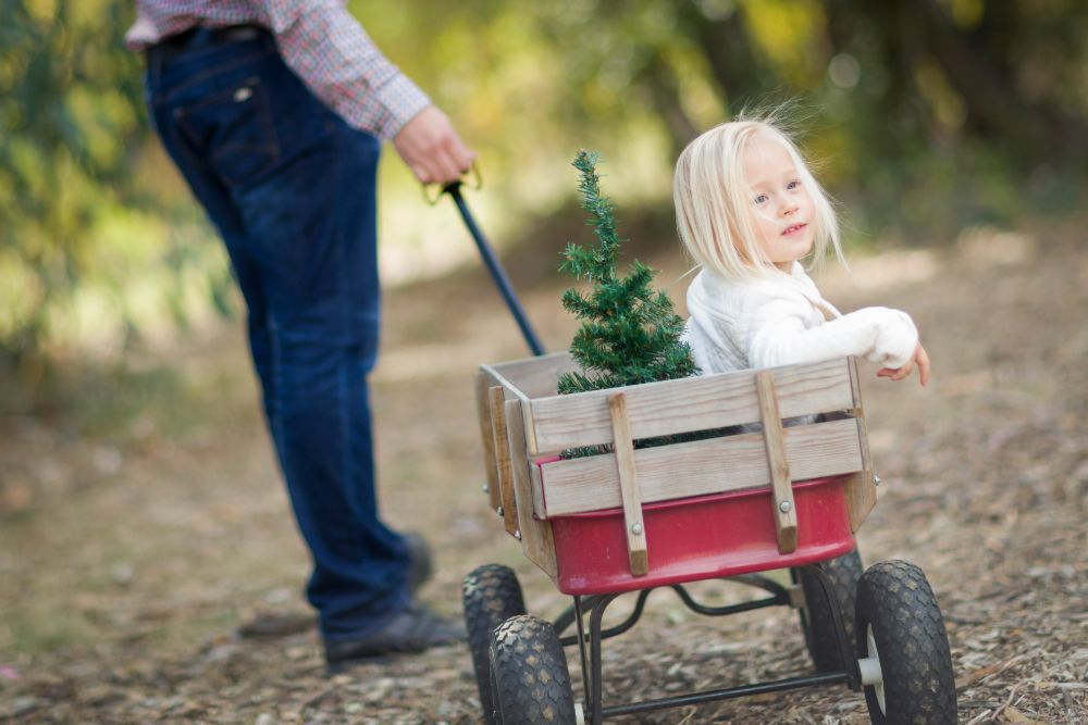 For Kids Both Young and Old: The 10 Best Kids Wagons