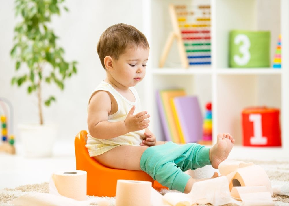 10 Best Potty Chairs and Seats (2019 Reviews)