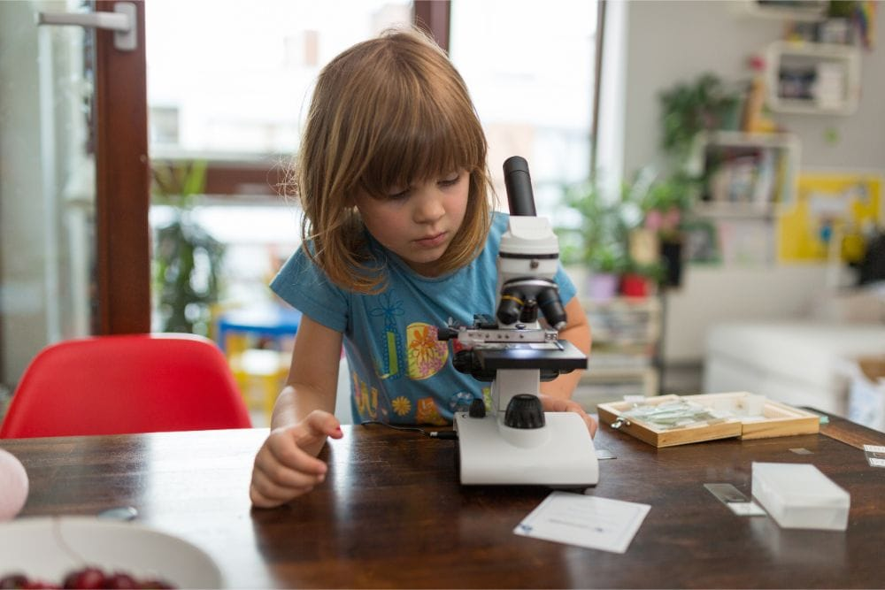 The Best Microscopes for Your Little Scientist