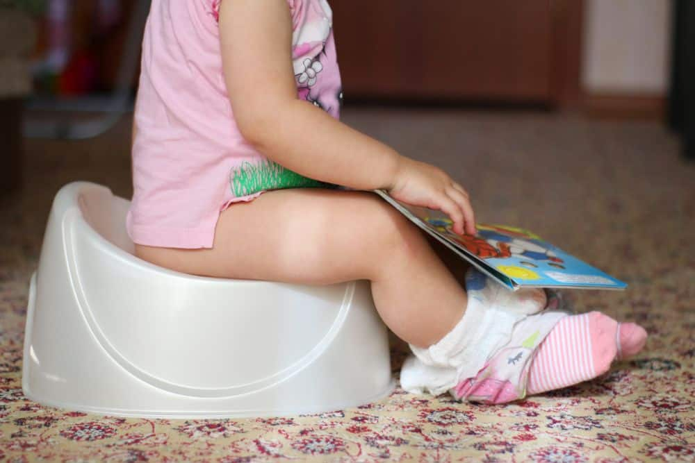 Toddler sitting on a potty seat while reading a book