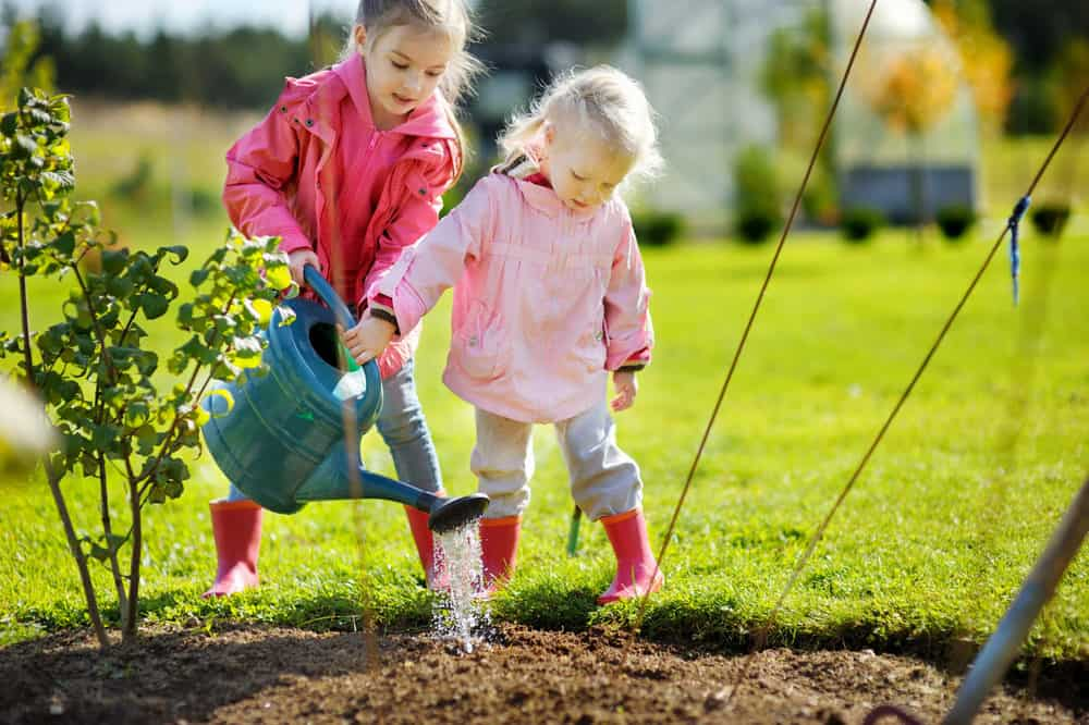 Two little girls gardening together