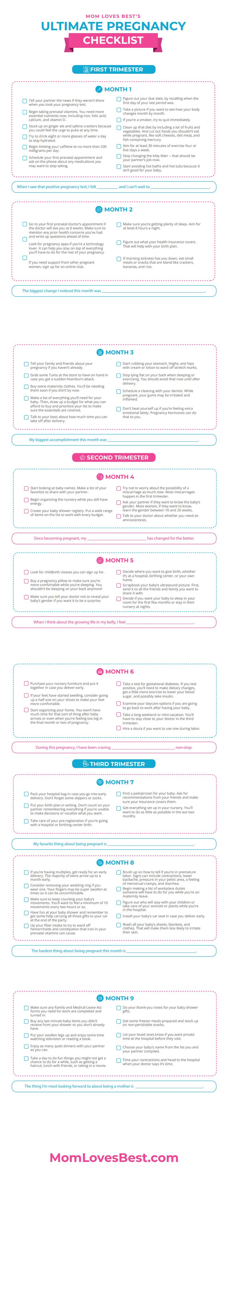 Pregnancy Checklist Month by Month PDF Download