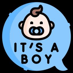 Baby Boy Birth Announcement Ideas Icon